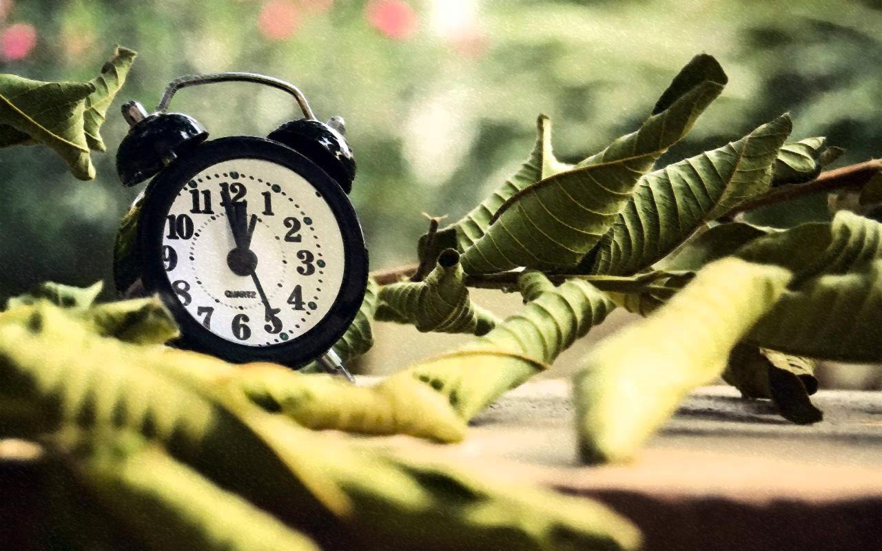тайм-менеджмент, или как перестать спешить