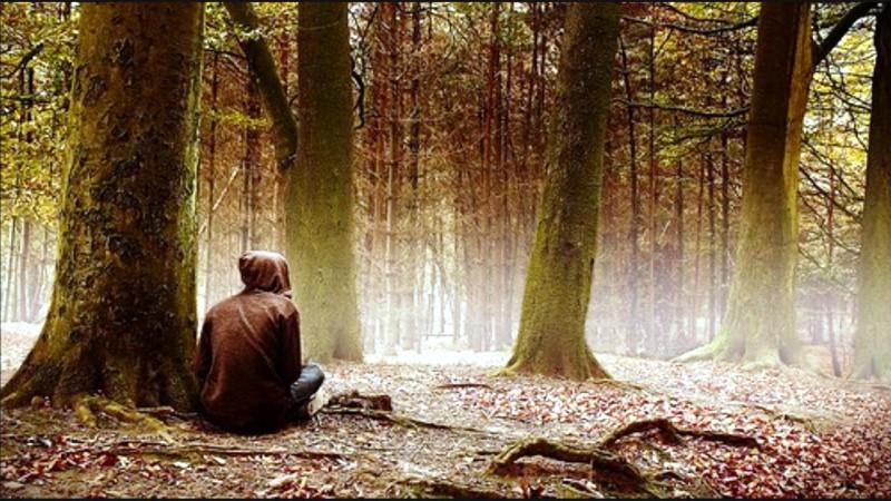 Как не потеряться в лесу
